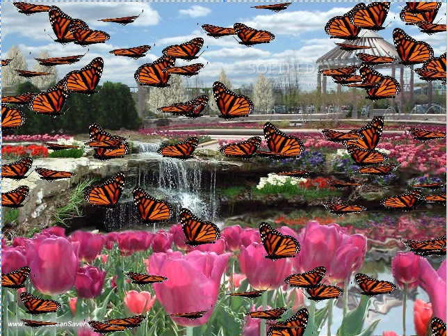 Brentwood Bay Is Home To The World Famous Butchart Gardens Not To Mention Butterfly Gardens And